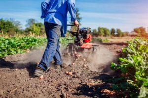CORSO IAP IMPRENDITORE AGRICOLO PROFESSIONALE ONLINE