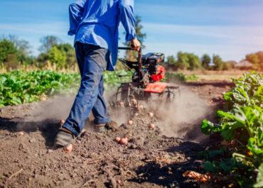 corso iap online imprenditore agricolo professionale